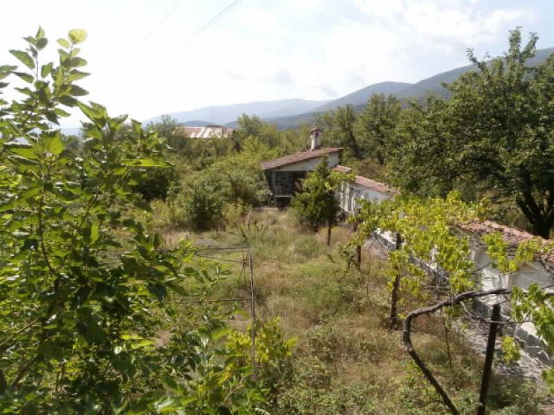 vila-spatalenitsa_8523-4